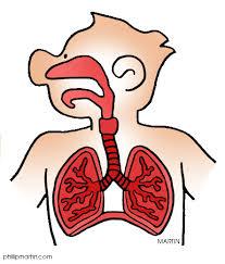 Course Image POSTER -Πνευμονολογικού τμήματος